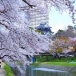 岡崎城公園の駐車場の料金や営業時間は?付近に無料や安い駐車場はある?
