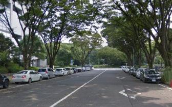 路上駐車01-官公庁