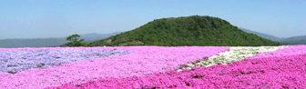 茶臼山高原02