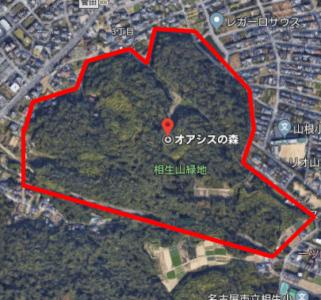 相生山緑地「オアシスの森」