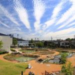 碧南海浜水族館のビオトープエリア